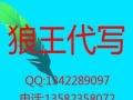 芜湖代写产品说明功能介绍