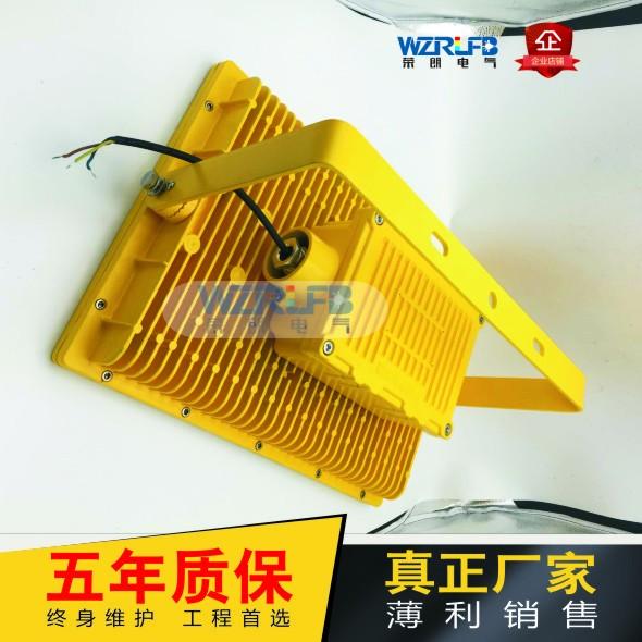 利雄CCD97同款RLB97LED防爆投光灯