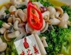 川湘菜、本帮菜、家常菜培训中式炒菜学习厨师烹饪培训班