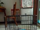 小型动物笼舍出售