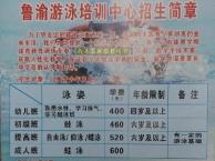 西南大学游泳专业人才输送单位 鲁渝体育游泳培训中心