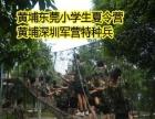 2016黄埔军训特色冬令营招生报名|椮簼