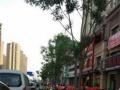 中海国际社区 商业街卖场 带租约出售 40可贷款