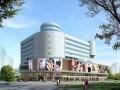 枣阳商业大厦(1一3层)整体招商