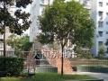 东坝平桥有空调3居龙眼花园132平米,租1500,快来联系我