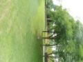 三圣乡景区占地120u亩带马术场高尔夫练习场