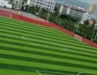 人造草坪每平米价格