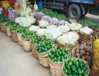 价格适中的食材配送服务哪家会比较好 -珠海食材配送中心