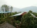 长滩村 厂房 5500000平米