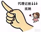代理武汉市企业登记代理 工商注册代理 新公司记账代理