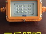 30W小方形矿用隔爆型巷道灯DGS30/127L(A)