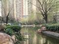 凤城八路 天朗御湖三室116户型 南北通透铂金楼层 免税 急