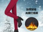 秋冬款加厚加绒保暖高腰弹力彩色小脚铅笔裤 大码打底裤 女