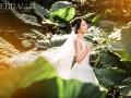 汕头斑马视觉婚纱摄影 那天,阳光正好