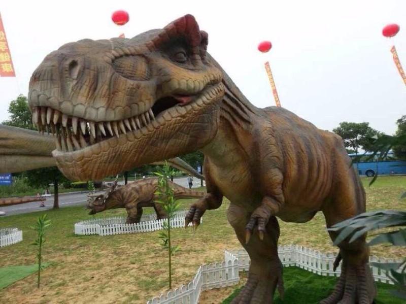 周口军事飞机模型坦克 变形金刚 恐龙展览