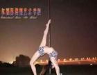 丽水哪里有零基础舞蹈培训、专业培训舞蹈演员