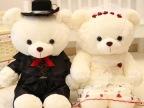 厂价批发情侣婚纱泰迪熊公仔婚庆新婚压床娃娃毛绒玩具结婚礼物