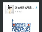 潮州宠物猫宠物狗航空运输