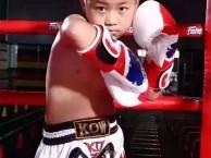 少儿 学生 成人散打泰拳搏击班北京专业拳馆