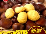 神栗2017新下树有机生栗子燕山即食板栗生新鲜5斤装