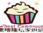 麦喀隆私家蛋糕加盟