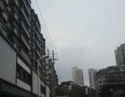 台江,老药洲街光明城店面 180万7000每月租金