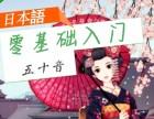 深圳中大博文 日语学习零起点