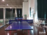 假期教成人以及小孩学打乒乓球入门及基础训练