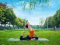 瑜伽教练培训需要多久