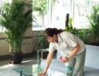 专业单位开荒、保洁托管、洗地毯、地板打蜡、石材翻新