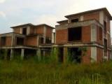 從化鰲頭12畝平地兩棟600平方別墅轉讓