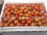 现货采摘 大量供应(黄蜜樱桃)基地直销味甜个大新鲜水果批发