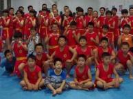 南开区哪里有武术培训班少儿培训班-天津武术少儿学习班