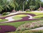 重庆园林设计专业招生+打造独特美感+成就你梦想