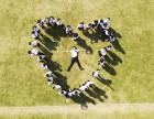 专珠海业毕业照 相册制作珠海无限蚂蚁广告摄影