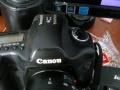佳能5D1相机