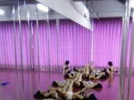 牛仔舞,拉丁,恰恰,肚皮舞现代舞等成人舞蹈培训