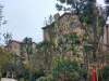 沈丘-房产5室以上1厅-393万元