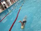 江门暑期少儿游泳培训全年招收游泳学员