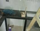 铺地板,贴墙砖,做橱柜