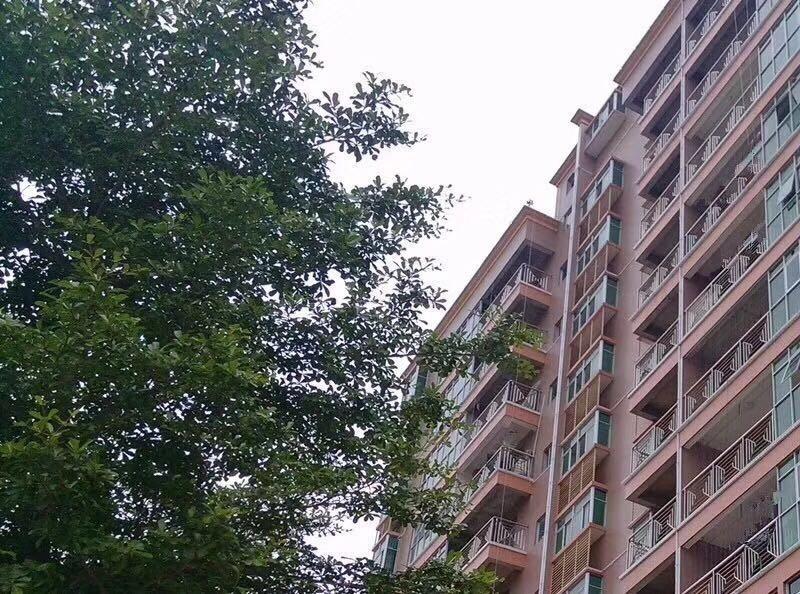 松湖丽景3栋花园小区首付10万起分期8年带空中花园松湖花园