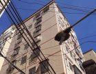 深圳公明整栋农民房出售