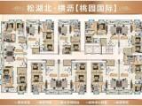 东莞松湖北横沥统建楼-桃园国际,三房总价27万一套起