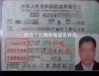 检AB证 准驾证 常年收ABC证