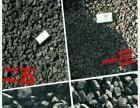 经销全国各地煤炭