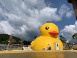 鲸鱼岛乐园百万海洋球,积木王国,游乐设备租赁