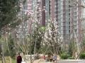 燕京航城二手房79平两居满两年地暖房精装修真实房源