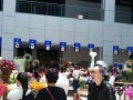 昆明斗南国际花卉市场亚洲罪大的花卉交易市场商铺出售