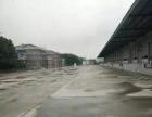 桃浦高平台仓库6000平米层高11米场地15亩大