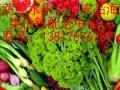上海水果配送中心,上海水果配送公司